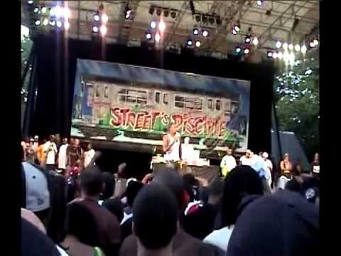 Nas Live In Central Park
